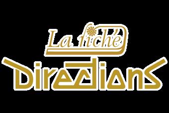 логотип красителей для волос directions